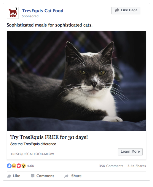Facebook Cat Food Ad Example
