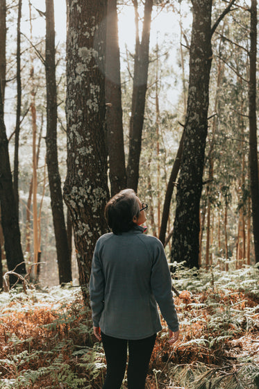 a back of a person looking up in a forest