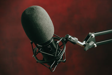 a black microphone mounted on a stand