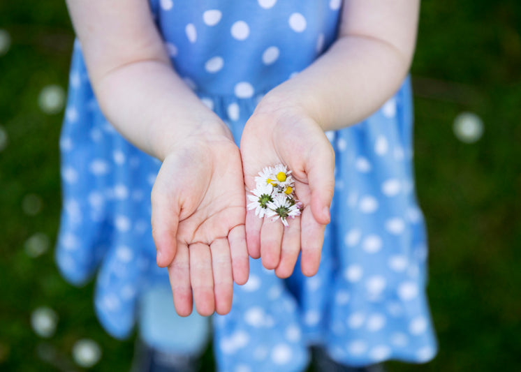 A Girl In A Polkadot Dress Holds Out Dandelions