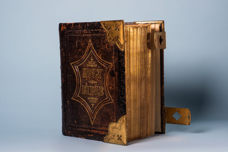 A Leatherbound Gilded Bible