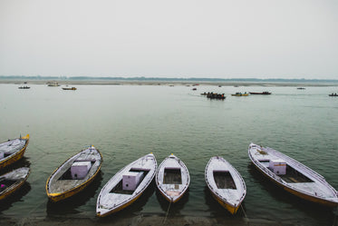 a line of boats at shore
