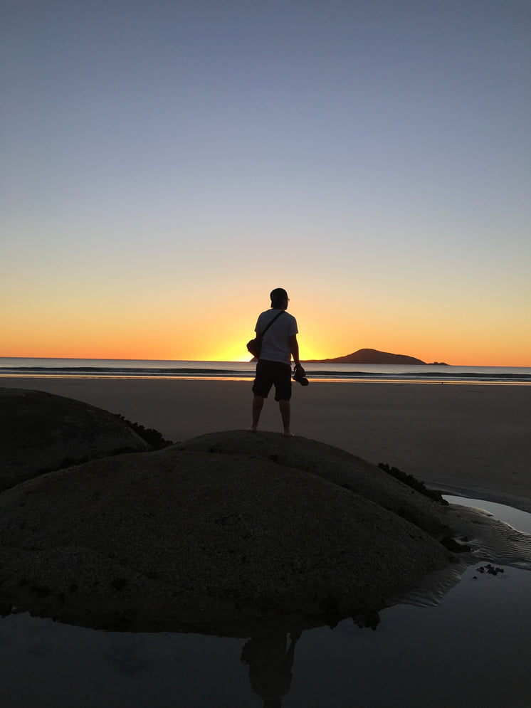 A Man On A Dune Watches The Sun Set From The Beach