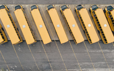 a row of parked yellow school buses