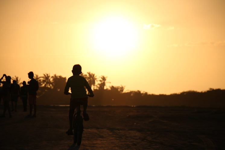 A Silhouette Of A Person Riding A Bike At Sunset