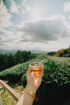 a small drink to cheers the field of vines below