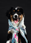 a smiling black and tan dog with floral necktie