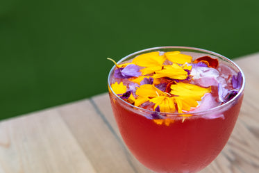 a taste of summer with a floral cocktail