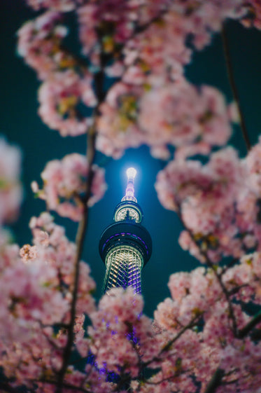 a tower through pink blooms on a tree branch