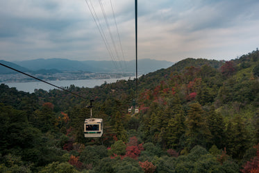 a white gondola over thick trees turing in the fall