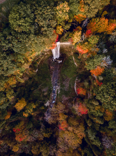 aerial photography fall leaves and waterfall