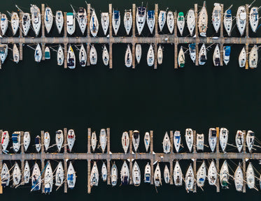 aerial two rows of docked sailboats