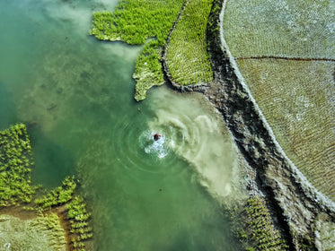 aerial view of a man taking a dip