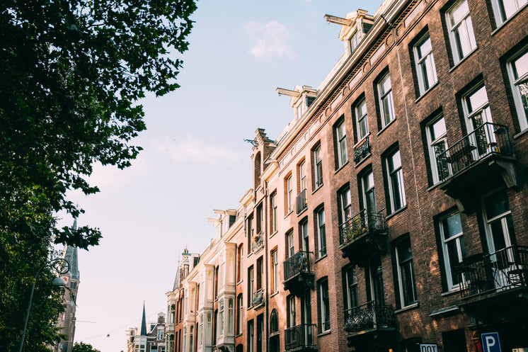 Amsterdam Street In The Sun