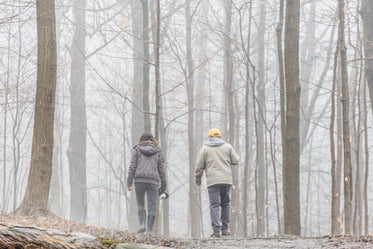 an older couple strolls into a fog filled forest