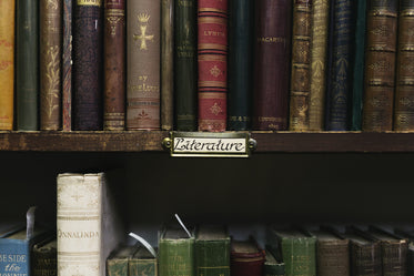 antique book store shelves