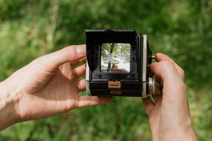 Antique Camera View Finder In Nature