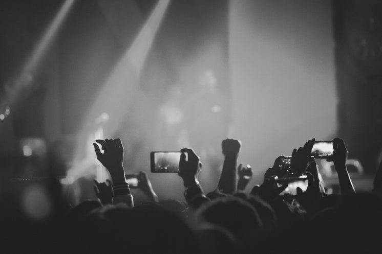 Audience Members Hold Up Mobile Phones Filming A Concert