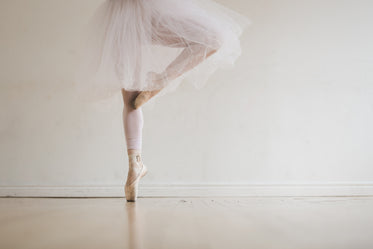 ballet dancer in tutu on toes