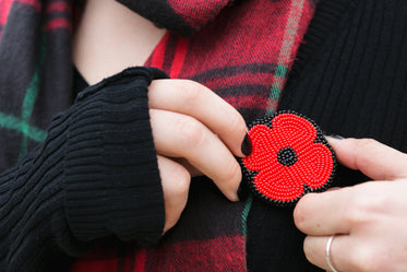 Free Beaded Poppy Pin Image: Browse 1000s of Pics