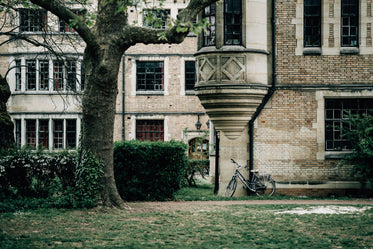 bicycle rests against an old building with green grass