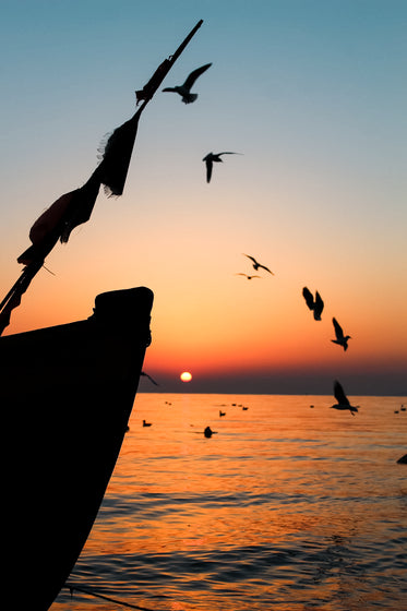 birds and boats at sunrise
