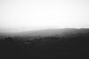 black and white fog rolling over hills and trees