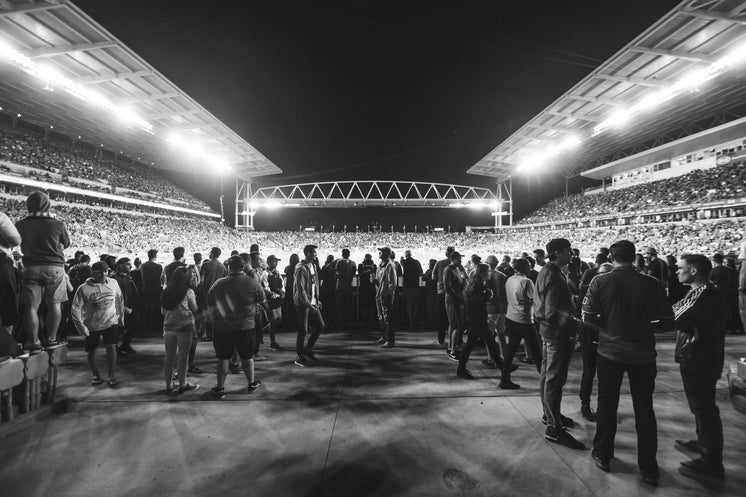 Black And White Stadium
