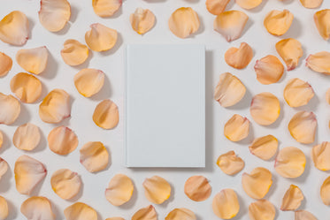 blank white book with rose pedals