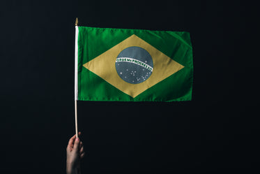 brazilian flag against black