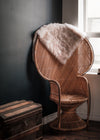 brown wicker peacock chair on the corner of a room