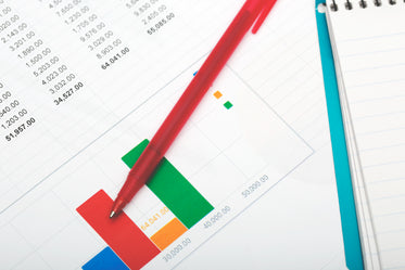 budget and finance tracking