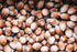 Free Chestnuts Texture Photo — High Res Pictures