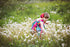 child picking dandelions in field