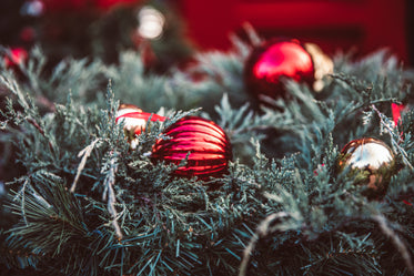Free Christmas Decorations On Greenery Photo — High Res Pictures