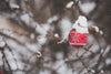 christmas ornament outdoors