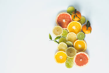 citrus slices with blank space