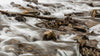 close up of riverbed