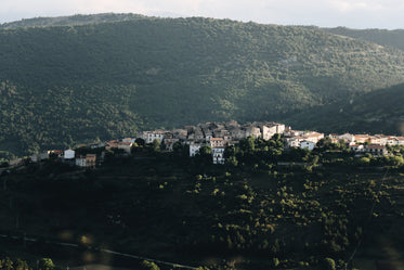 clustered houses on a hill