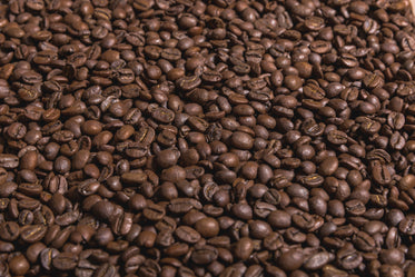 coffee beans flat sideangle