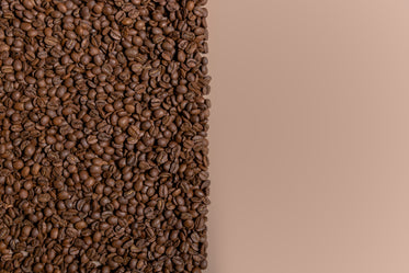 coffee beans half color