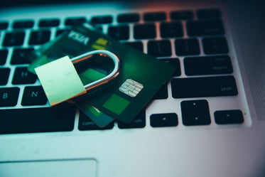 computer security lock and payment