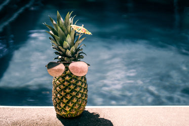 cool pool pineapple
