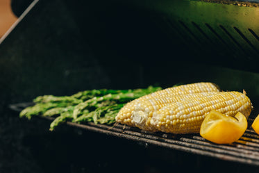 corn and other vegetables on barbque