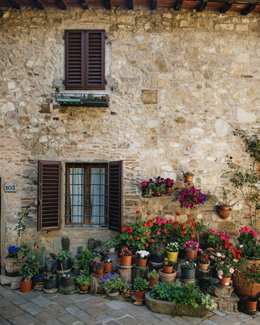 countless plants in a courtyard