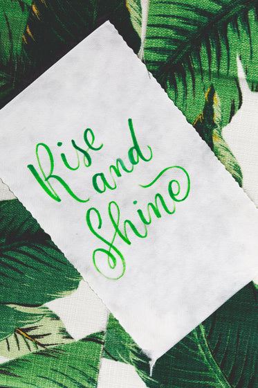 cursive handwriting with 'rise and shine'
