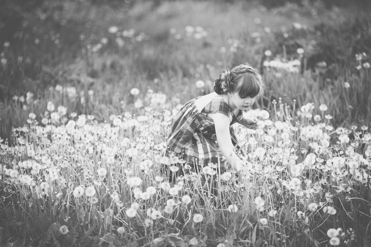 Dandelion Picking Girl Black And White