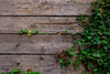 deck and vines texture