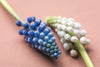 detailed close up of two muscari flowers