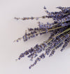 detailed image of dried lavender